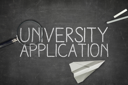 Educational Application Assistance (University)