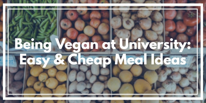 Being Vegan at University: Easy & Cheap Meal Ideas for Students
